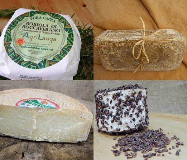 grandi-formaggi-natale-robiola-pecorino-gianduiotto-tchoco